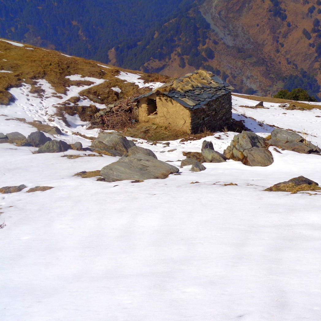 Snow Trek from Rakkh Resort Palampur