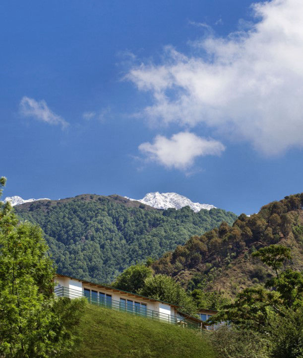 Rakkh Resort Palampur in Summer