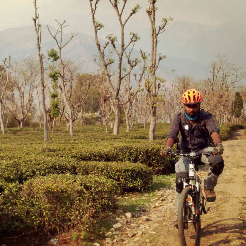Cycling in TEa Estate Palampur
